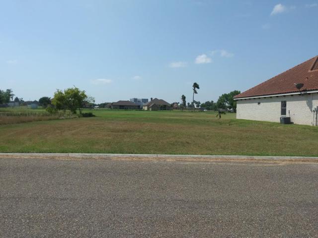 1204 Rhett Drive, Pharr, TX 78577 (MLS #219556) :: The Ryan & Brian Real Estate Team