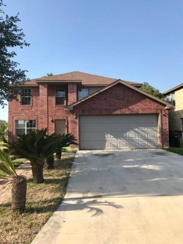4136 Petunia Avenue, Mcallen, TX 78504 (MLS #219559) :: Jinks Realty