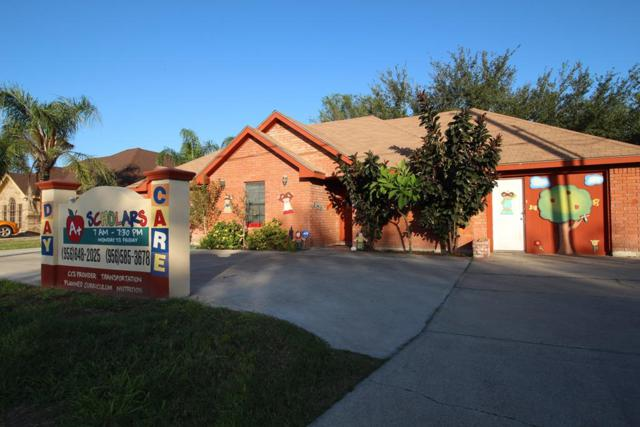 611 Showers Road, Palmview, TX 78572 (MLS #219651) :: The Ryan & Brian Real Estate Team
