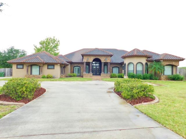 1804 El Mileno Drive, Mission, TX 78573 (MLS #219672) :: The Lucas Sanchez Real Estate Team