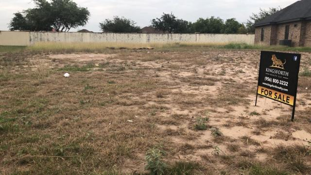 Lot 22 Los Palomos Street, Weslaco, TX 78596 (MLS #219680) :: eReal Estate Depot