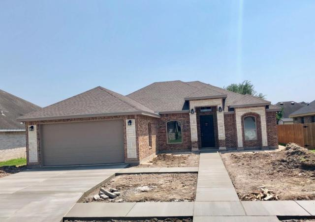 803 Bluebird Avenue, Pharr, TX 78577 (MLS #219717) :: The Lucas Sanchez Real Estate Team