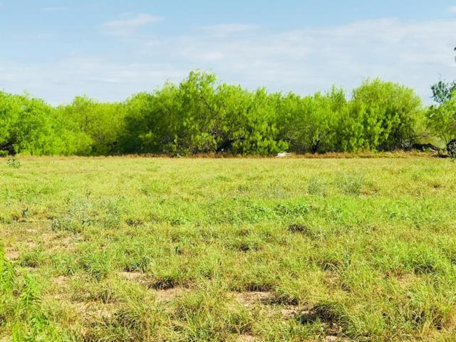 00 Veterans Blvd, Mission, TX 78572 (MLS #219758) :: eReal Estate Depot
