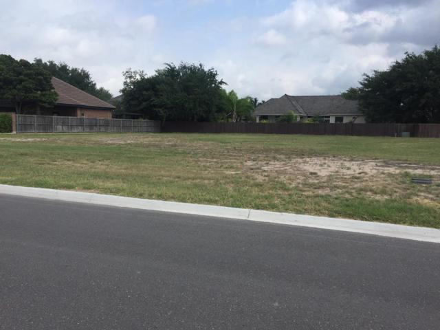 1613 Madison Hope Avenue, Mission, TX 78572 (MLS #219759) :: eReal Estate Depot