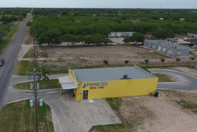 9836 N Bentsen Palm Drive, Mission, TX 78572 (MLS #219780) :: BIG Realty
