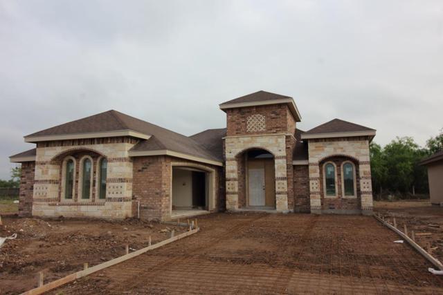5421 San Diego Street, Edinburg, TX 78542 (MLS #219824) :: Newmark Real Estate Group