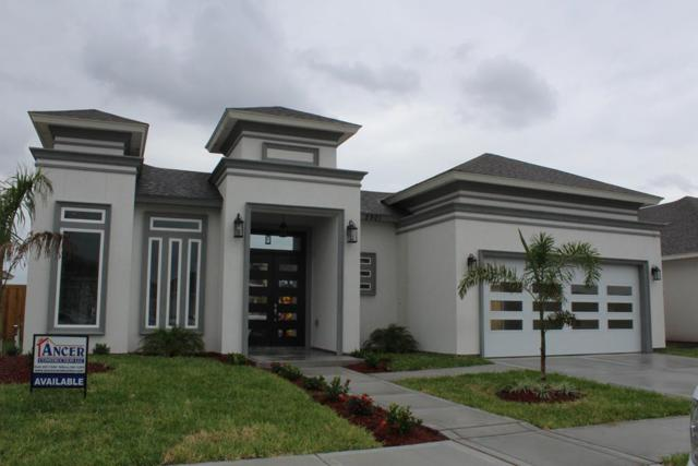 2901 Bobcat Drive, Edinburg, TX 78542 (MLS #219838) :: Newmark Real Estate Group