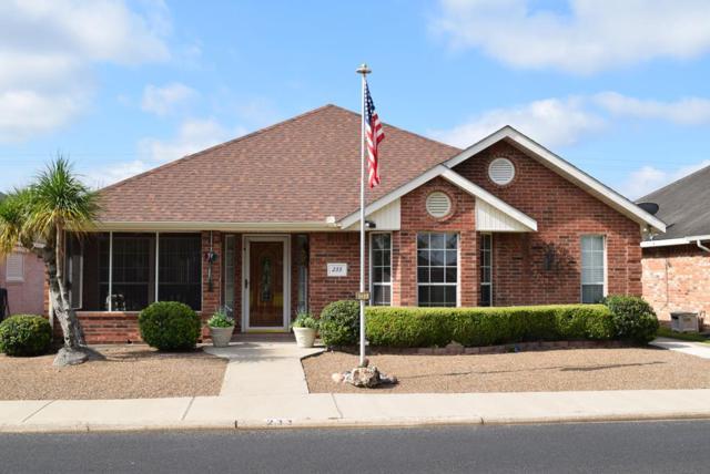 233 Karen Drive Lot 323, Alamo, TX 78516 (MLS #220456) :: Berkshire Hathaway HomeServices RGV Realty
