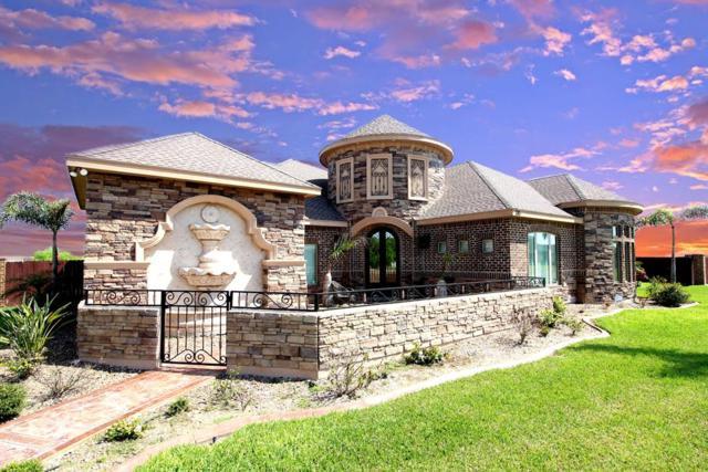 315 N 17th Street, Hidalgo, TX 78577 (MLS #220608) :: Berkshire Hathaway HomeServices RGV Realty