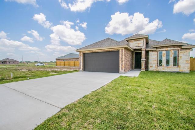 1335 N 11th Street, Alamo, TX 78516 (MLS #220725) :: Berkshire Hathaway HomeServices RGV Realty