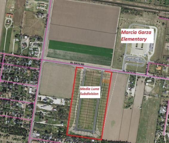 70 Middle Street, Alamo, TX 78516 (MLS #220801) :: Berkshire Hathaway HomeServices RGV Realty