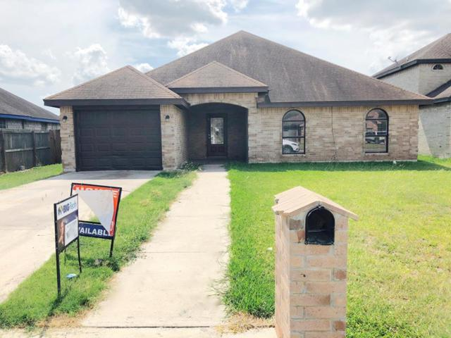 935 13th Street, Alamo, TX 78516 (MLS #220892) :: Jinks Realty