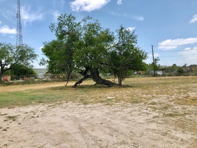 727 Tulipan Avenue, Hidalgo, TX 78557 (MLS #221546) :: The Ryan & Brian Real Estate Team