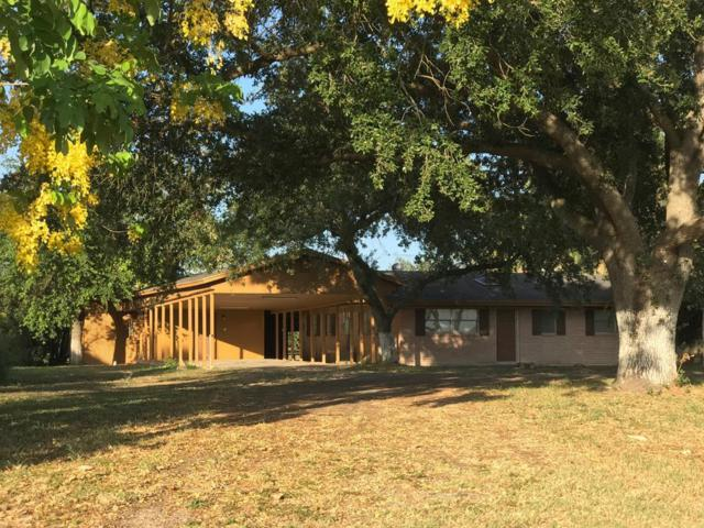 650 N Lion Lake Drive, Weslaco, TX 78596 (MLS #221735) :: Jinks Realty