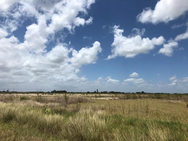 23597 Nelson Road, Rio Hondo, TX 78583 (MLS #221769) :: The Lucas Sanchez Real Estate Team