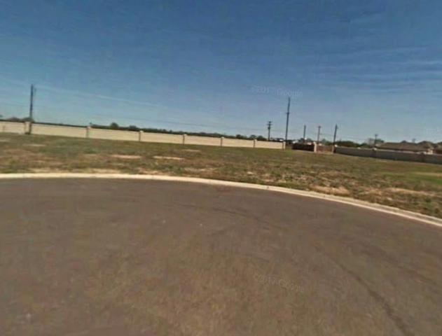 10716 N 26th Street, Mcallen, TX 78504 (MLS #221863) :: Jinks Realty
