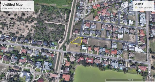 1802 Pecos Street, Mission, TX 78572 (MLS #221897) :: Jinks Realty