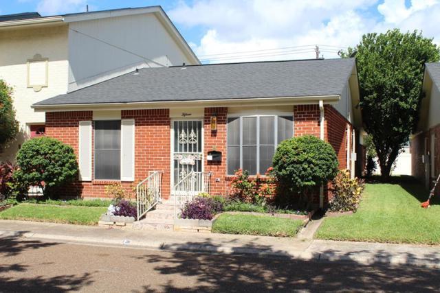 500 Wichita Avenue #15, Mcallen, TX 78503 (MLS #221962) :: Jinks Realty