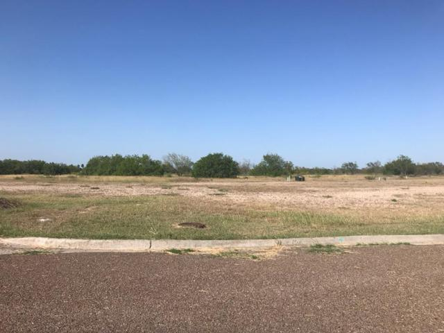 00 Shady Grove Trail, Weslaco, TX 78596 (MLS #222150) :: The Ryan & Brian Real Estate Team