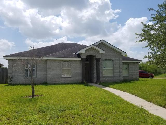 3814 Amando Street, Edinburg, TX 78539 (MLS #222244) :: eReal Estate Depot
