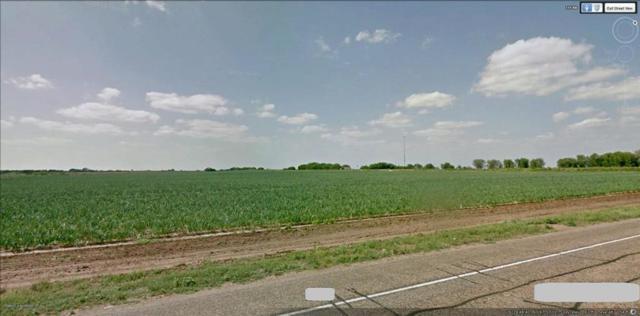 0 Fm 88, La Sara, TX 78561 (MLS #222643) :: Jinks Realty