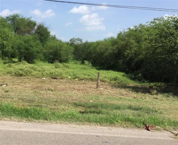 00 NO Us Highway Business 281 Highway NO, Edinburg, TX 78539 (MLS #300662) :: Top Tier Real Estate Group