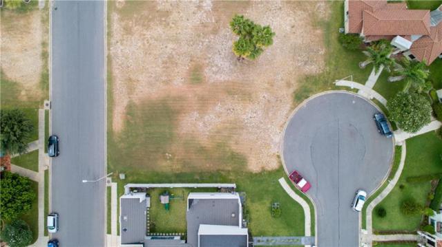 1009 E Covina Avenue, Mcallen, TX 78503 (MLS #301128) :: Jinks Realty