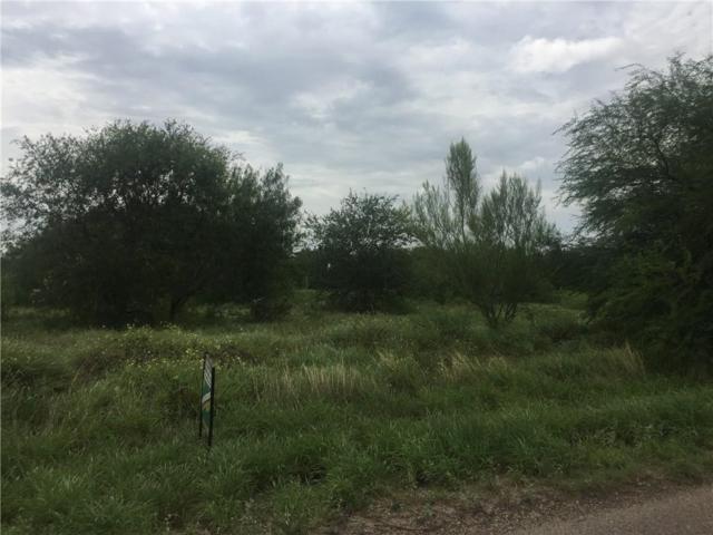 6.5 mile N Stewart Road N, Mission, TX 78573 (MLS #301146) :: eReal Estate Depot