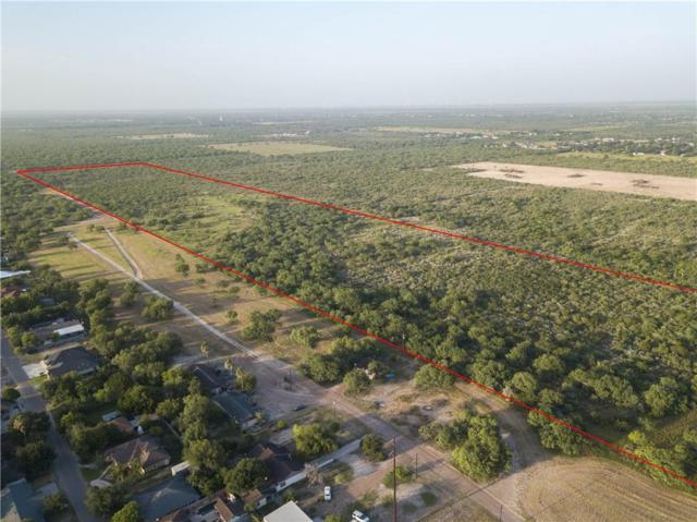 000 Us Highway 83 Highway, Alto Bonito, TX 78582 (MLS #301207) :: Jinks Realty