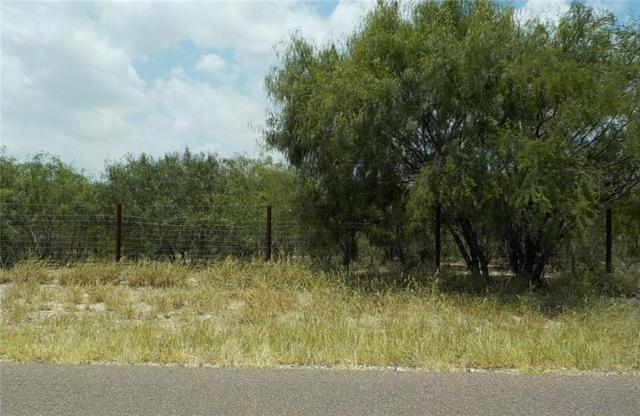 5.2 N Texan Road, Mission, TX 78574 (MLS #301246) :: Jinks Realty