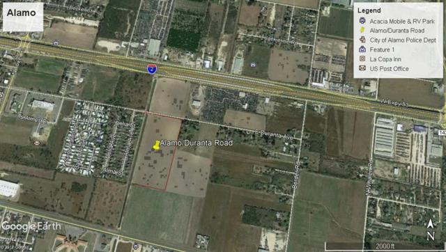 300 Duranta Avenue, Alamo, TX 78516 (MLS #301298) :: The Ryan & Brian Real Estate Team