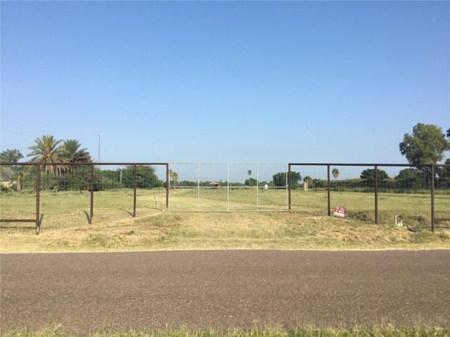 000 Eubanks Road, Mcallen, TX 78541 (MLS #301302) :: The Lucas Sanchez Real Estate Team