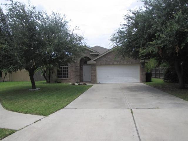 4124 W Violet Avenue, Mcallen, TX 78504 (MLS #301456) :: Berkshire Hathaway HomeServices RGV Realty