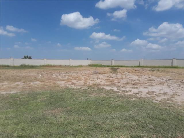 419 River Crest Street, Rio Grande City, TX 78582 (MLS #302731) :: Jinks Realty