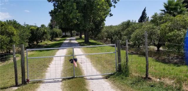 2642 E Mile 11 N Road N, Donna, TX 78537 (MLS #302809) :: Jinks Realty