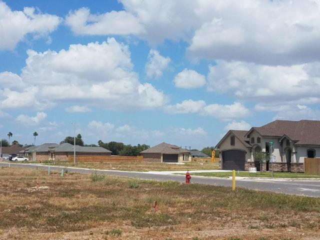 1348 13th Street, Alamo, TX 78516 (MLS #302835) :: The Ryan & Brian Real Estate Team