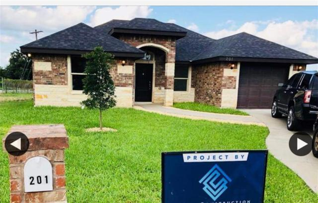 201 Washingtonia Palm Avenue, Alamo, TX 78516 (MLS #302866) :: The Lucas Sanchez Real Estate Team