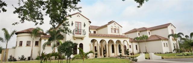3507 Oak Ridge Lane, Mission, TX 78573 (MLS #302925) :: The Ryan & Brian Real Estate Team