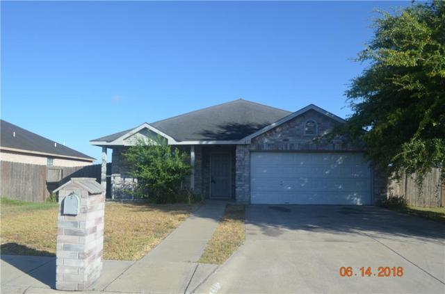 413 Dulce Drive, Alamo, TX 78516 (MLS #302947) :: The Ryan & Brian Real Estate Team