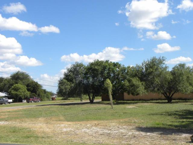 4717 W Lark Avenue, Mcallen, TX 78504 (MLS #303046) :: eReal Estate Depot