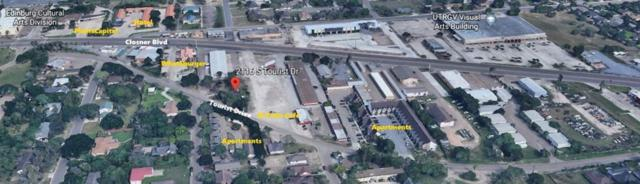 2116 S Tourist Drive, Edinburg, TX 78539 (MLS #303301) :: eReal Estate Depot