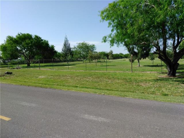 1825 W Rogers Road, Edinburg, TX 78541 (MLS #303376) :: eReal Estate Depot