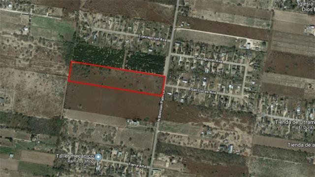 00 Bentsen Palm Drive, Mission, TX 78574 (MLS #303566) :: eReal Estate Depot