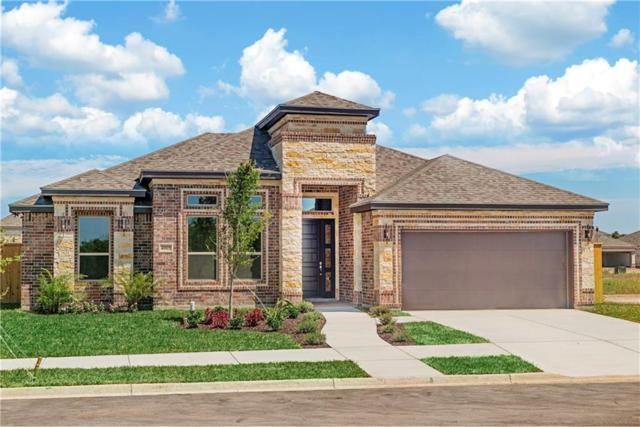 4005 Grand Canal Drive, Mission, TX 78572 (MLS #303659) :: The Ryan & Brian Real Estate Team
