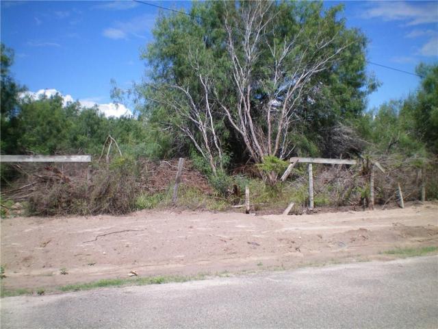 000 N Western Road, Mission, TX 78572 (MLS #303701) :: Jinks Realty