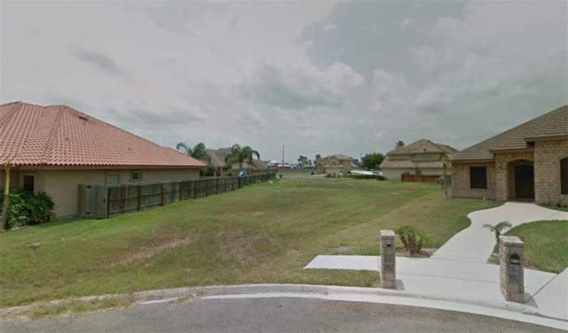 2604 Cottonwood Street, Mission, TX 78574 (MLS #303784) :: Jinks Realty
