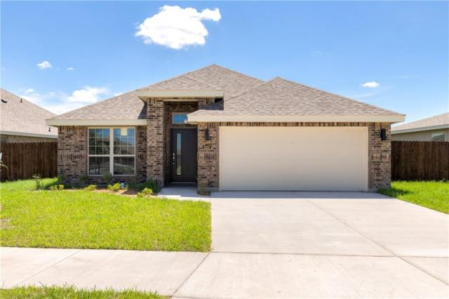 5201 Escondido Pass, Mcallen, TX 78504 (MLS #303873) :: Jinks Realty