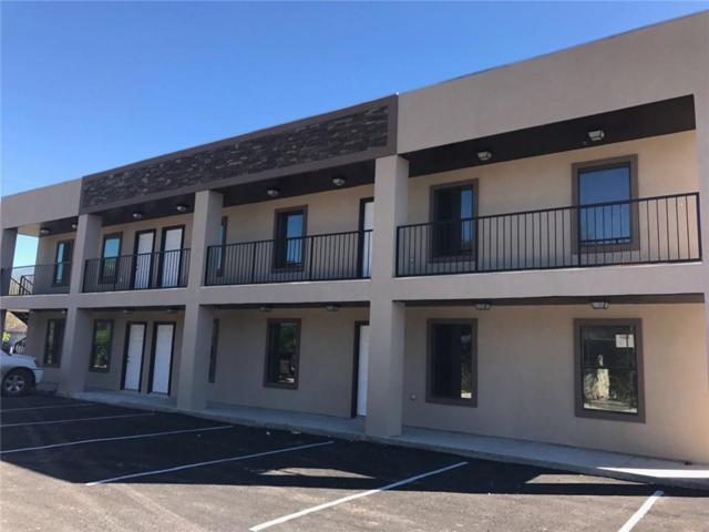 1100 E Cedar Avenue, Mcallen, TX 78501 (MLS #304075) :: Jinks Realty