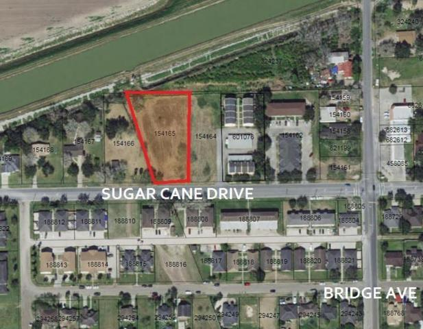 0 Sugar Cane Drive, Weslaco, TX 78599 (MLS #304102) :: The Ryan & Brian Real Estate Team