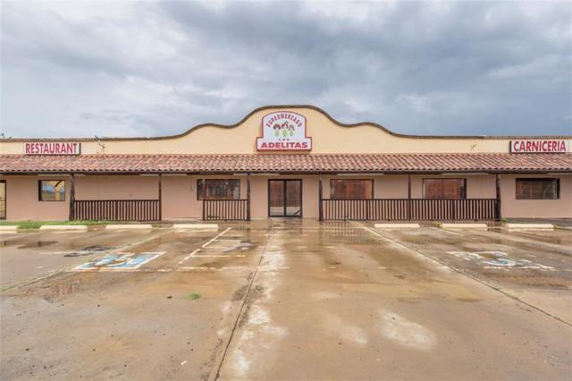 5710 N Bentsen Palm Drive N, Mission, TX 78574 (MLS #304138) :: eReal Estate Depot